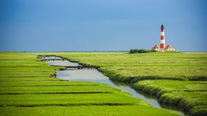 Nordsee Kreuzfahrten